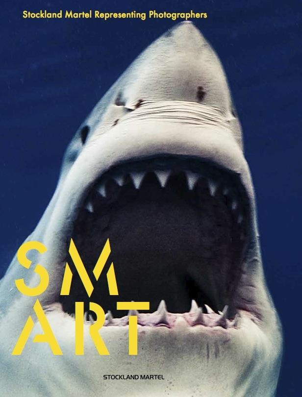 SMart Book cover