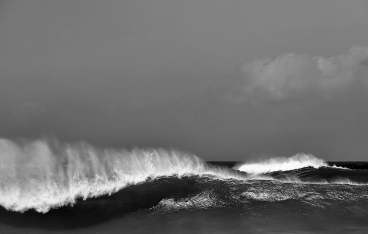 Steven Lippman_Oahu 7