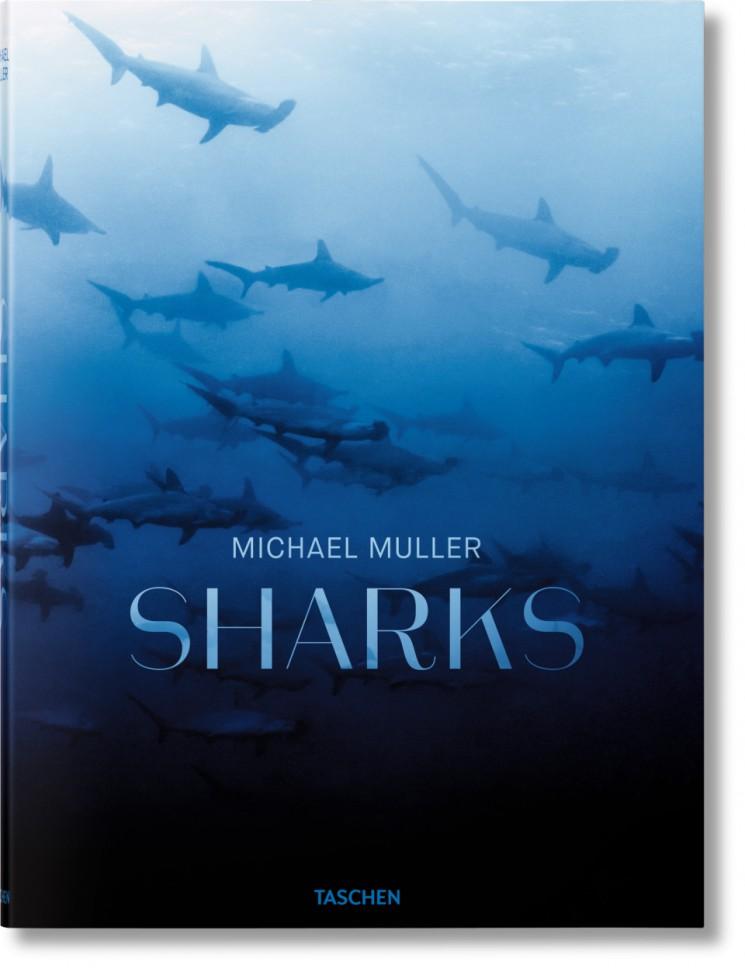 Michael Muller_Sharks cover