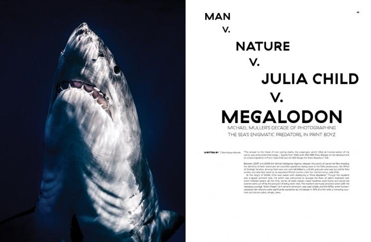 Michael Muller_Sharks_Flaunt-1