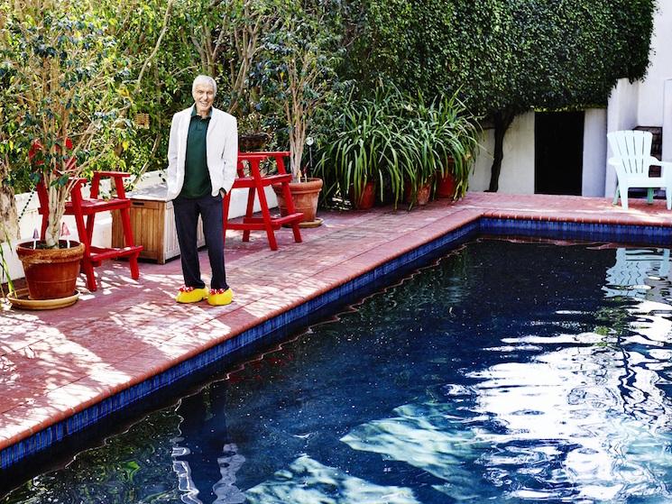 Jeff Lipsky_Dick Van Dyke pool
