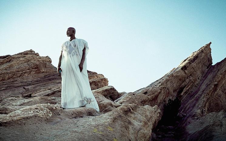 Kwaku Alston_Djimon Hounsou 6