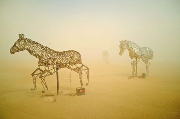 uwe-duettmann_burning-man_horses